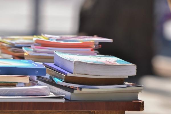 lector marejada libros vina del mar2